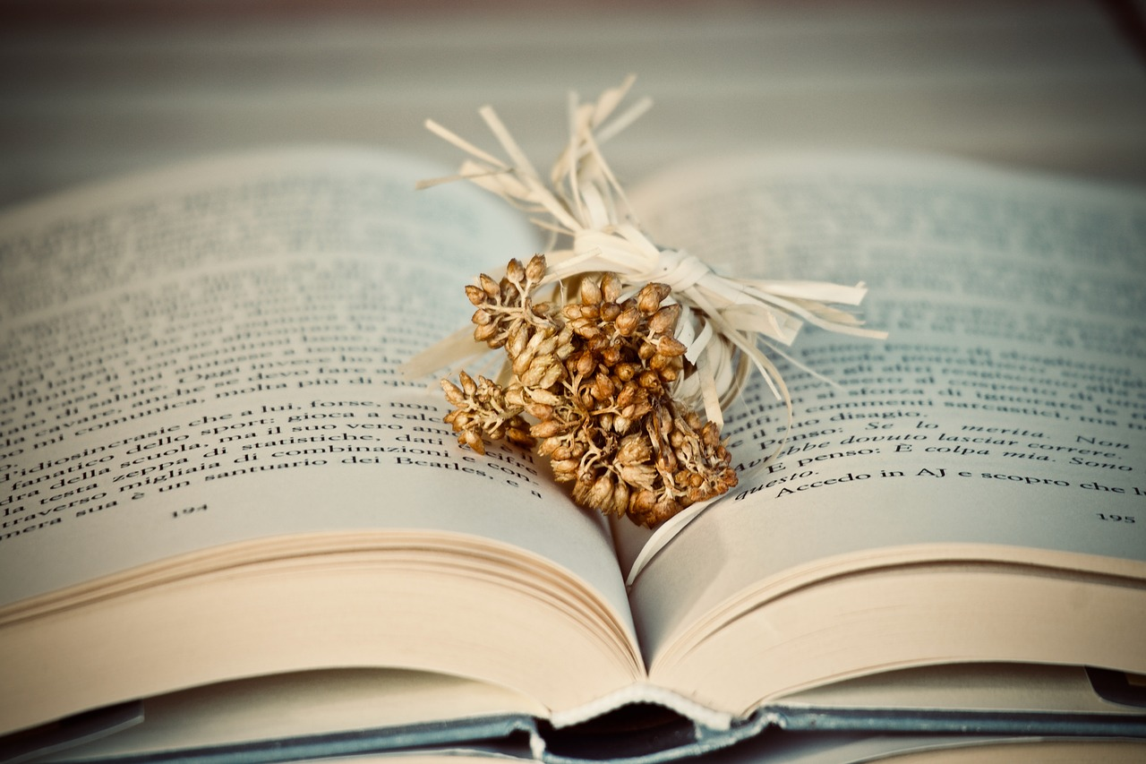 book, flowers, dried flowers